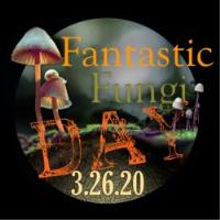 Fantastic Fungi - CANCELLED